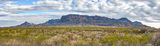 Chiso Mountian, landscape, pano, panorama, Big bend national park, scenic, clouds, Chihuahuan desert, creosote bush, desert, mountains