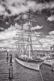 Galveston, Elissa, Elissa Tallship BW, tallship, moored, ship, harbor, seascape, ocean, sailing ships, boats, bw, black and white, coastal, Texas, Texas coast. sea, historic, ships, National Historic