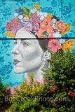 San Antonio, mural, street art, wall mural, downtown, fiesta mural, city of san antonio, san antonio downtown, images of texas, texas, party, fiesta 2019