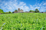 Presidio La Bahi, blue savia, catholic church, fort, historic, mission, missions, spanish, wildflowers, landscape
