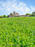 Presidio La Bahi, blue savia, catholic church, fort, historic, mission, missions, spanish, spring, springtime, wildflowers, vertical, landscape