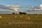 Haybales, hay, bales, Texas Hill Country, landscape, grasses, round bales, feed, horses, cows, goats, sheep, sunset, clouds, evening, farmer, field, llano, Texas
