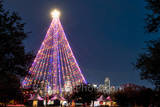 Austin, Zilker Christmas Tree,  Austin skyline, downtown,  city, high rise, moon tower, downtown, zilker holiday tree