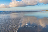 Beach Sand Dollar Reflection