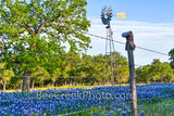 texas windmill, bluebonnets, cowboy boot, boot fence, texas bluebonnets, texas wildflowers, blue bonnets, texas scenery, texas landscape, windmills in texas, texas wildflower landscape, texas hill cou