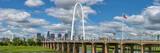 Dallas Skyline Panorama 9860