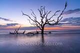 Driftwood beach, driftwood, jekyll island, beach, fiery, red, orange, pink, dawn, sunrise, silouette, deadwood, tree, tide, surf, firey, color, tide rolled in, barrier island, alantic coast, georgia,