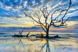 driftwood beach, morning, sunrise, reflections, sunrise, jekyll island, golden isles, barrier island, alantic coast, Georgia, east coast, landscape, beach