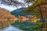 Fall, Foliage, Garner State Park, fall, cypress branches, cypress tree, branches, maples, fall, autumn, frio river, old baldy, colors, Texas Hill country, landscape, reflect, water,  colorful, texas h