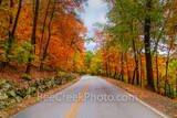fall scenery, fall images, fall pictures, fall season, road, fall, season, fall colors, autumn, foliage, autumn foliage, twist, color, maples, red, orange, yellows, black hickory, pine, curvy, fall fo