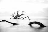 driftwood beach, driftwood, jekyll island, sunrise, trees, tide, deadwood, surf, rays, Alantic ocean, georgia, golden isles, Georgia,  barrier island,