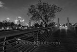 Houston Carruth Pedestrian Bridge BW