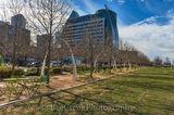 Dallas, Kyle Warren Park, downtown, views, city, city view, food trucks, restaurnat, concerts, events, exercise