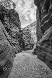 Path Through Canyon X BW