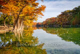 fall, frio river, scenic, fall scenery, autumn, autumn scenery, fall colors, texas hill country, hill country, colorful, bald cypress, fall season, emerald green water, river banks, river, serene,