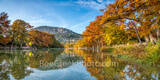 garner state park, frio river, autumn, bald cypress, texas hill country, fall, old baldy, river, landscape, water, reflections, golden, rusty, cypress, hill country, pano, panorama,