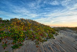 beach, island, sand dune, dune, south padre, south padre beach, south padre island, sun rise, landscape, coastal, texas