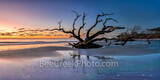 jekyll island, driftwood beach, boneyard beach, sunrise, colorful, sand, alantic ocean, deadwood, east coast, reflections, reflecting, colors, sky, Geogia, wet sand, pano, panorama, Golden Isles