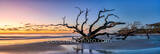 jekyll island, driftwood beach, boneyard beach, sunrise, colorful, sand, alantic ocean, deadwood, east coast, reflections, reflecting, colors, sky, geogia, wet sand, pano, panorama, golden isles, sea