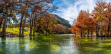 Fall Foliage, fall, cypress branches, cypress tree, maples, fall, autumn, frio river, old baldy, colors, Garner State Park, panorama, pano, panoramic, Texas, landscape, texas hill country, canvas, pri