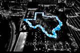 Texas shaped pool