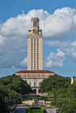Austin, UT Tower, Landmark, Littlefield Fountain, daytime, cityscape, tourist, city, campus, university of texas, downtown, blue sky, clouds, vertical, tall