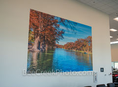Wall mural, Texas hill country, large print