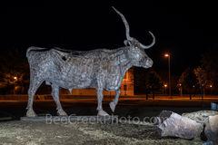 Sul Ross Bull, Alpine, rodeo history, Sul Ross State University, bronze, bull, statue, night, campus,  west texas,