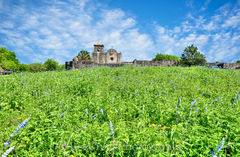 Presidio La Bahi, blue savia, catholic church, fort, historic, mission, missions, spanish, wildflowers, landscape,