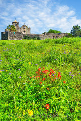 Presidio La Bahi, blue savia, catholic church, fort, historic, indian paintbrush, mission, missions, spanish, spring, springtime, wildflowers