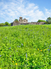 Presidio La Bahi, blue savia, catholic church, fort, historic, mission, missions, spanish, spring, springtime, wildflowers, vertical, landscape,