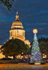 Texas Capitol Christmas Tree