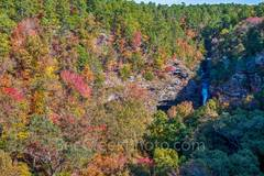 cedar fall, waterfall, bluff, cliff, colorful trees, auatumn, fall colors, river, pines, southern yellow pine, maples, sweet gum, black hickory, waters, Lake Bailey, stream, wilderness, scenic, scener