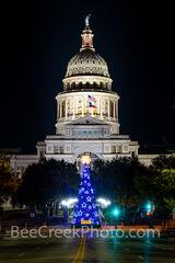Texas Capitol Christmas Tree Vertical 1220