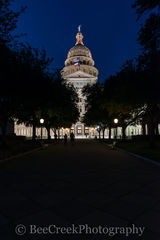 Texas State Capitol Night Vertical