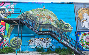 Houston, graffitt, art, street art, downtown, city, street scenes ,urban, mural,