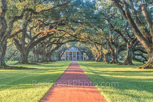 Lousiana, National Historic Landmark, Oak Alley, Sunrise, big house, canopy, landscape, landscapes, mansion, mississippi, oak trees, plantation, sidewalk, slaves, sugar cane