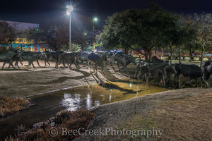 Dallas, Pioneer Plaza Park, cattle drive, downtown, longhorn bronze statues, night, tourisim, tourist, water