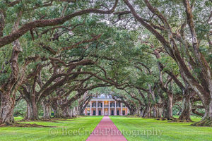 Lousiana, National Historic Landmark, Oak Alley, big house, branches, dusk, landscape, landscapes, mansion, mississippi, oak trees, plantation, sidewalk, slaves, sugar cane