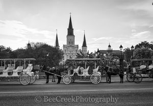 Cathedral, Jackson Square, Jackson statue, New Orleans, Saint Louis, black and white, bw, carriages, cityscape, cityscapes, garden, historic, horse, landmark, landscape, landscapes, mississippi, morni