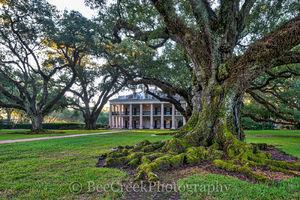 Lousiana, National Historic Landmark, Oak Alley, Sunrise, big house, branches, mansion, morning light, oak trees, plantation, sidewalk, slavesmississippi, sugar cane