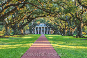 Lousiana, Oak Alley, afternoon, big house, branches, mansion, oak trees, plantation, sidewalk, slaves, sugar cane