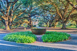 Lousianna, Oak Alley, Oaks, mansion, plantation, south view, trees