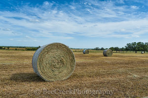 Haybales, blue sky, clouds, crop, farm, farms, ranch, ranches, texas, images of texas,