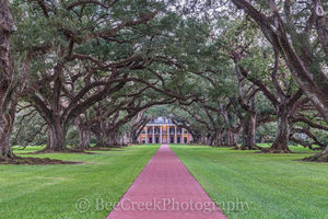 Lousiana, Oak Alley, Sunrise, big house, branches, dusk, mansion, oak trees, plantation, sidewalk, slaves, sugar cane