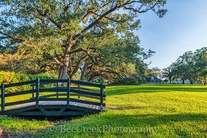 Lousiana, National Historic Landmark, Oak Alley, Sunrise, big house, branches, grounds, mansion, mississippi, oak trees, plantation, sidewalk, slaves, sugar cane, wooded bridge