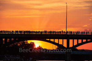 Austin, Texas, Bats, Congress Bridge, Austin Bats, cityscape, city, anticipation, street scene, people, siloutte, bat watch, spectators, orange glow,