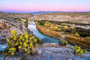big bend overlook, dusk, sierra de carmen mountains, mexico, usa, rio grande river, west texas, texas, sunset, prickly pear, cactus, pink, blue, sky, violet sky, mountains, big bend national park, big