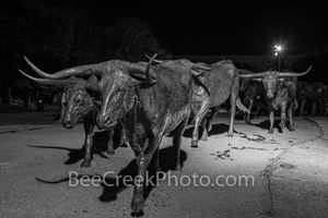 Dallas Bronze Longhorns Statues B W