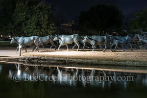 Dallad, Pioneer Plaza Park, cattle drive, city, cityscape, downtown, reflections, longhorns, park,